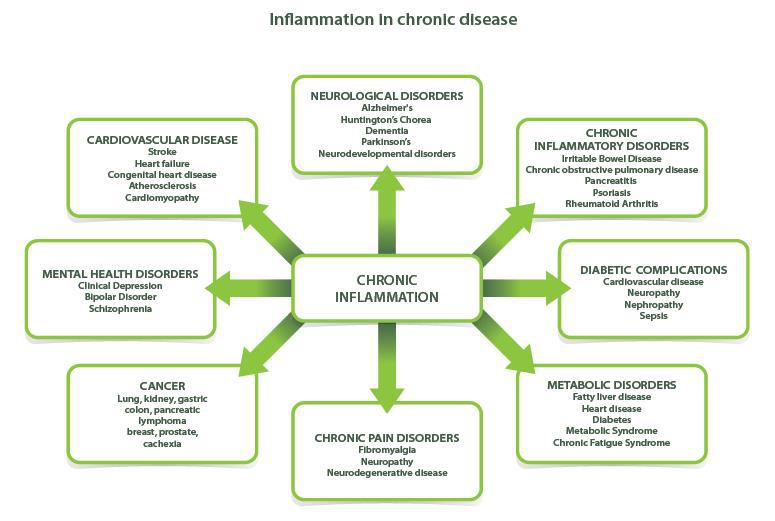Inflammation-diagram